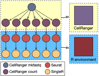 Single-cell sequencing pipeline